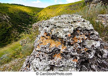 hills., campo, pietra