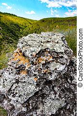 hills., feld, stein