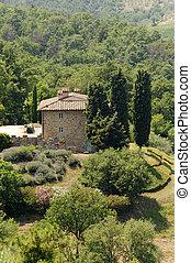 Hills in Tuscany near Artimino