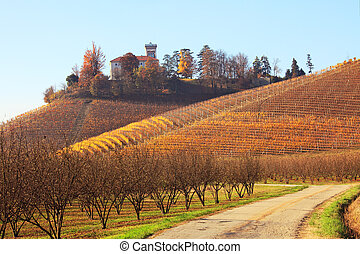 Hills of Piedmont. Northern Italy.