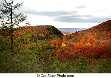Hills of West Virginia - the colorful hills of West Virginia...