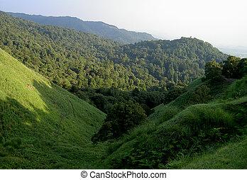 Hills - Green hills from Nara City,Japan