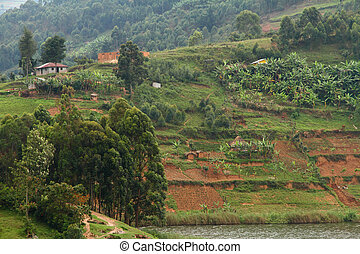 Hillside Farming Community