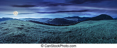 hillside meadow in high mountains - panoramic summer...