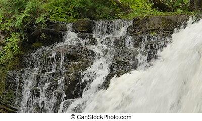 hilton, cima, cascada, primer plano, bajas