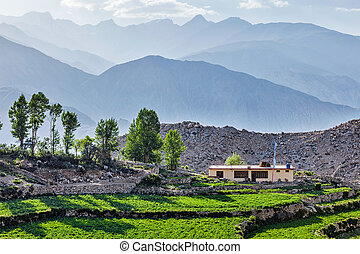 himalaya, village