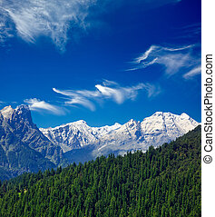 Himalayas and forest. India