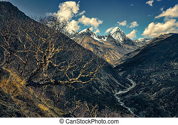 Himalayas mountains valley with white peaks and trees, Nepal