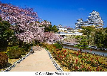 Himeji Castle in cherry blossom season, Hyogo, Japan - ...