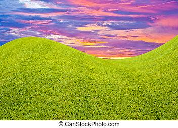 himmel, græs, aftenskumringen