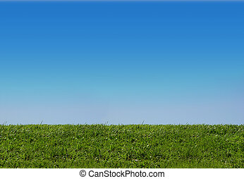 himmel, og, græs