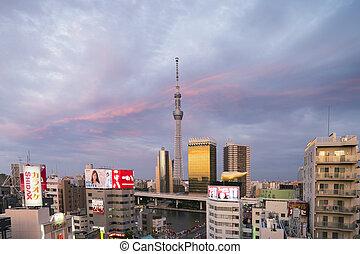 himmelsgewölbe, baum, tokyo, skyline