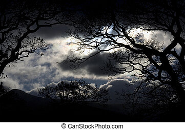 himmelsgewölbe, see- bezirk, nacht
