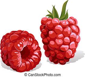 hindbær, isoleret