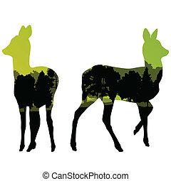 hinde, wildgerecht, hertje, dier, silhouettes, in, wild,...