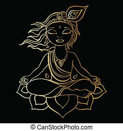 hindus, krishna., bóg