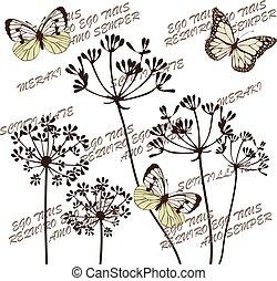 hinojo, flores, mariposas