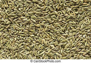 hinojo, semilla, plano de fondo