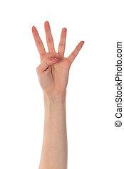 hintergrund, ausstellung, freigestellt, finger, vier, weibliche , weißes, hand