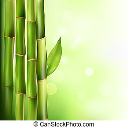 hintergrund., bambus, vektor, illustration.
