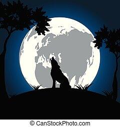 hintergrund., hell, nacht, wolf, mond