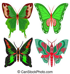 hintergrund, papillon, satz, schöne , weißes