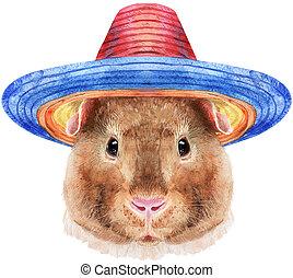 hintergrund, teddy, aquarell, hut, sombrero, porträt, ...