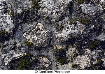 wasser beton brunnen moos typisch gut wasser beton stockfoto bilder und foto clipart. Black Bedroom Furniture Sets. Home Design Ideas