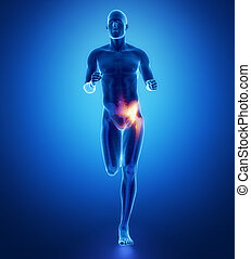 HIP - running man leg scan in blue