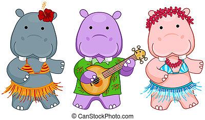 hipopótamos, hawaiano