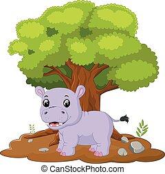Hipopótamos, selva, caricatura