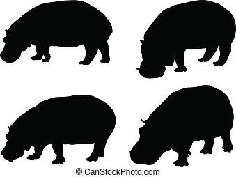 hippo collection - vector