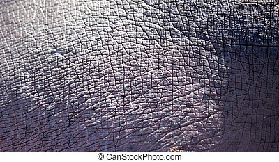 Hippo skin as background