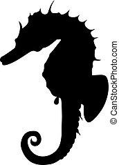 (hippocampus), seahorse