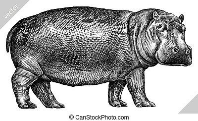 hippopotame, isolé, illustration, vecteur, noir, graver, blanc