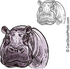 Hippopotamus hippo wild animal vector sketch icon