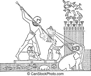 Hippopotamus hunt, vintage engraving. - Hippopotamus hunt,...