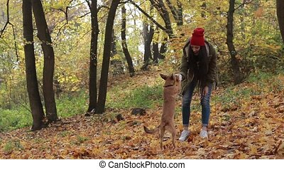 Hipster girl and dog enjoying in autumn park - Cheerful...
