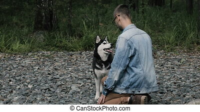Siberian husky funny dog in nature - Hipster guy trains the...