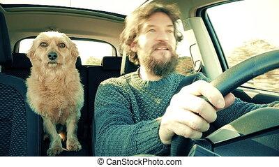 Hipster man singing with dog driving car at sunset 4K