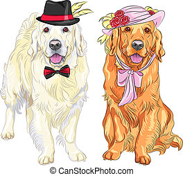 hipster pair of dogs: white labrador gentleman in a hat and bow tie and red labrador lady in a hat with flowers and ribbons and bow at the neck