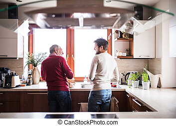 Hipster son with his senior father in the kitchen.