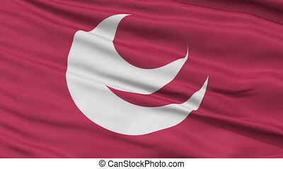 Hiroshima Prefecture Close Up Flag