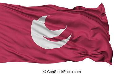 Hiroshima Prefecture Isolated Flag
