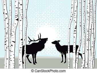 Hirsch auf Lichtung