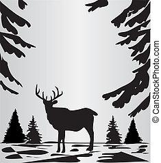 hirsch, in, der, wälder