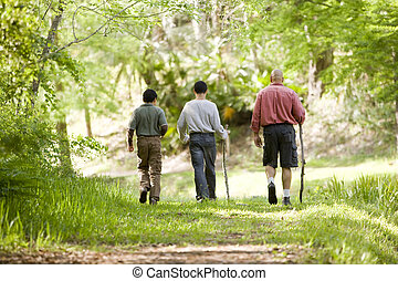 Hispanic father and sons hiking on trail in woods - Rear...