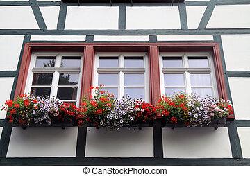 histórico, casas, con, flor, cajas