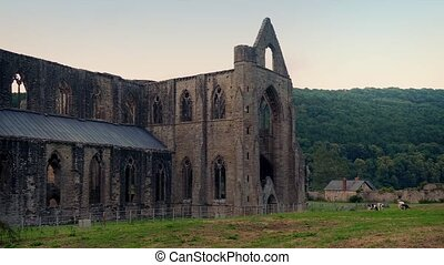 Historic Abbey Ruins In Countryside - Peaceful scene of old...