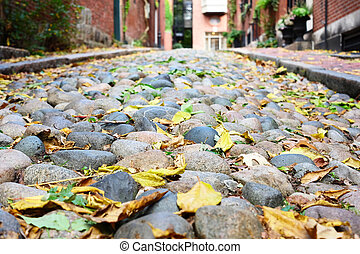 Historic Acorn Street at Boston